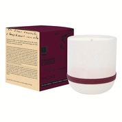 Correspondence - Pepperberry Cardamom - Candle 250gm