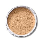 EX1 Mineral Powder - 3.0